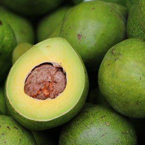 Avocado Easy Keto Diet Snacks