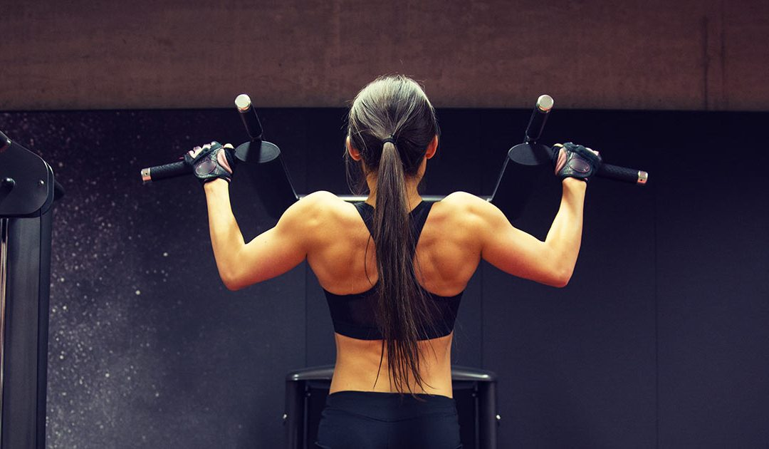 Best Back Workouts Guide